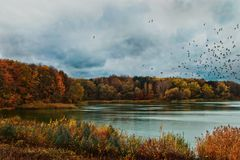 Lake in the Lviv region royalty free stock photos