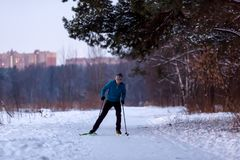 Photo of male skier in blue jacket in winter park Royalty Free Stock Photos