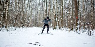 Photo of male skier in gray jacket. In winter forest Royalty Free Stock Images