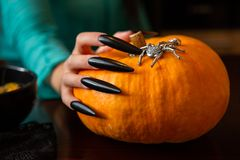 Photo of man`s hands with pumpkin jack , spider sitting at wooden table. In halloween stock photos