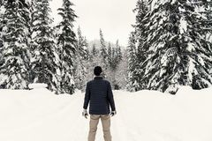 Photo of a Man in the Snowy Forest Stock Photography