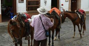 Photo of man and three horses in Santafe de Antioquia, Colombia Royalty Free Stock Photography