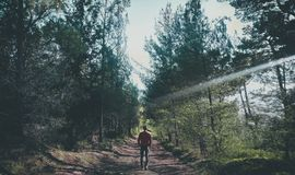 Photo of Man Walking Along Pathway at Forest Stock Photos
