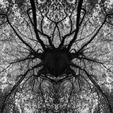 Photo manipulation - tree black and white mandala Stock Images