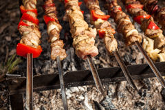 Photo of meat on fire at forest Stock Images