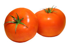 Photo of 2 meaty tomatoes isolated on white Royalty Free Stock Image