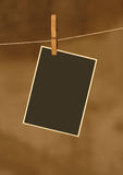 Photo on metal rope with wood Clothespins royalty free stock image