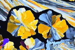 Colorful micro crystals in polarized light. Photo through a microscope. Photo through a microscope of crystals grown from a solution of citric acid in alcohol stock illustration