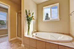 Photo of a mid-sized bathroom with oval bathtub Stock Images