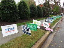 Long Row of Midterm Election Signs royalty free stock images