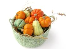 Photo Miniature fake Basket with pumpkins on white background. Dollhouse miniature, polymer clay toy, plastic dummies Royalty Free Stock Photo