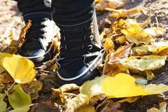 Photo moderne de cloesup de chaussures Photo libre de droits