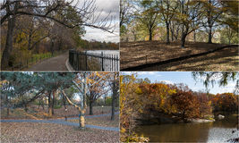 Photo mosaic with scenes from Central Park, New York. Composite of four images of Central Park in New York Stock Photo