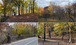 Photo mosaic with scenes from Central Park, New York Stock Photo