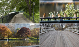 Photo mosaic with scenes from Central Park, New York. Composite of four images of Central Park in New York Stock Images