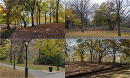 Photo mosaic with scenes from Central Park, New York. Composite of four images of Central Park in New York Royalty Free Stock Images