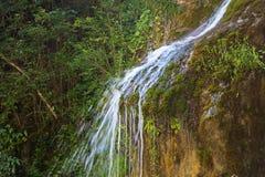 Photo of narrow waterfall among vegetation Stock Photo