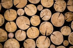 Photo of natural wood Stock Images