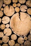 Photo of natural wood. Picture of a pile of natural wooden logs background, top view Stock Photos