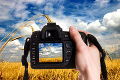 Photo nature. Man taking a landscape photography with a digital photo camera royalty free stock photo