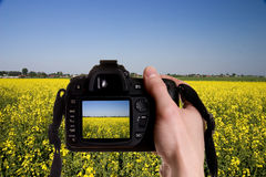 Photo nature. Man taking a landscape photography with a digital photo camera royalty free stock photography