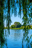 Photo of nature around beautiful blue lake. At summer Royalty Free Stock Images