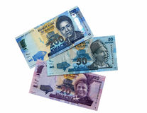 New money Malawi. Photo of the new banknotes of Malawi in 2012 on a white background Stock Photo