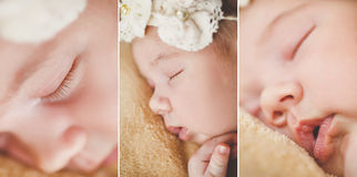 Photo of a newborn baby curled up sleeping on a blanket Royalty Free Stock Photography