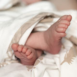 Photo of newborn baby feet Royalty Free Stock Image