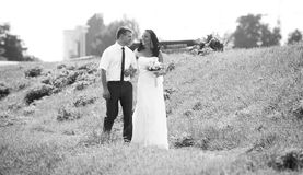 Photo of newly married couple walking at meadow Stock Photos