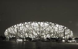 Photo noire et blanche de nuit de NID d'OISEAU de Pékin Images libres de droits