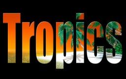 Photo num?rique d'art de tropiques illustration libre de droits