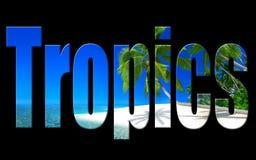 Photo num?rique d'art de tropiques illustration de vecteur