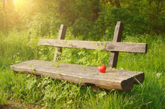 Free Photo Of Abandoned Bench Royalty Free Stock Photo - 40215175
