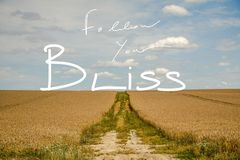 Follow Your Bliss Handwriting Quote In A dreamy Landscape. A photo ofna landscape with a path and puffy white clouds with a handwriting quote saying ``Follow stock photos