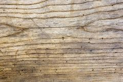 Photo of old oak wood texture with grooves and holes from the wo Stock Photography
