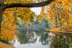Autumnal motif in old park, Riga,Latvia, EC stock image