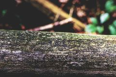 Photo of old rusty log royalty free stock images