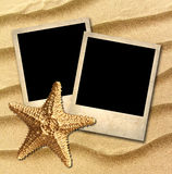 Photo of an old style decorated starfish Royalty Free Stock Images