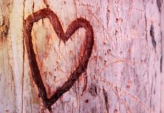 Photo of old tree trunk with heart carved on it. Valentine& x27;s day concept. Romantic background. Photo of old tree trunk with heart carved on it Stock Image