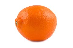 Photo of orange ripen minneola Royalty Free Stock Photography