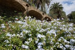 Flower Garden at Park Guell in Barcelona. Photo of park guell flower garden in barcelona spain. This park was designed by architect antonio gaudi stock photography