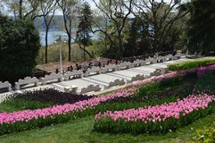 Park and resting place with beautiful garden. Photo of park and resting place with view to Bosphorus, Emirgan park in Turkey stock image