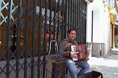The accordion player Stock Photos