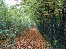 Path behind the fence captured in autumn Royalty Free Stock Image