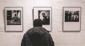 Photo of Person Standing in Front of Three Pictures royalty free stock images