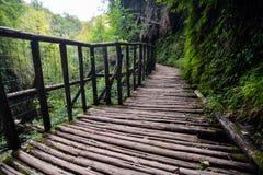 Pathway Wooden Footbridge Stock Images