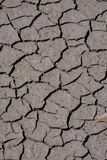 Dry cracked earth texture. Photo Picture of Dry cracked mud earth texture royalty free stock image
