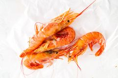 Fresh shrimps prawns. Photo picture of some fresh shrimps prawns fish food royalty free stock photography