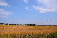 Landscape The Po Delta. Photo pictureLandscape of The Po Delta River in Italy Royalty Free Stock Photos